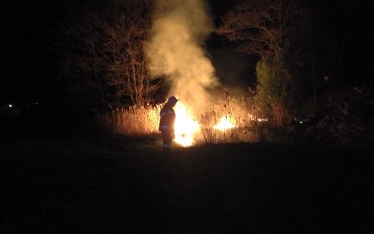 Pożar traw w Krowicy