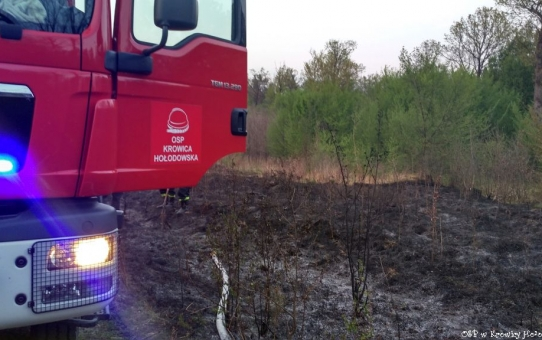 Duży pożar lasu
